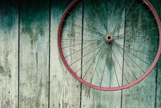 Nina Lishuk Shutterstock