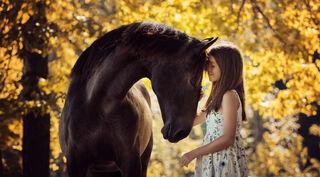 Alla-Berlezova/Shutterstock