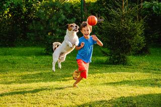 alexei_tm/Shutterstock