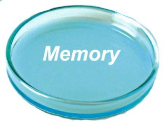 Petrie dish w/ the word Memory in it