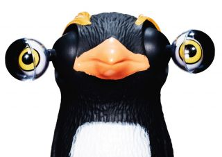 Penguin with bulging eyes