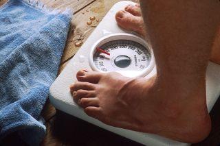 Obesity Myth David Bedrick