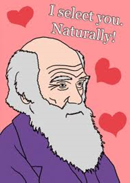 Darwin sexual selection
