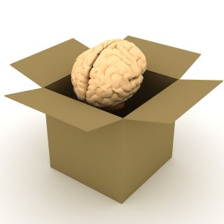 brain out of the box