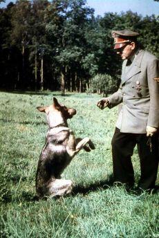 Hitler dog german shepherd Blondi