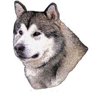 dog ear prick upright malamute