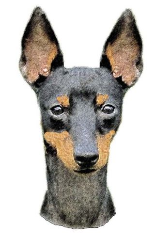 dog ear candle flame english toy terrier