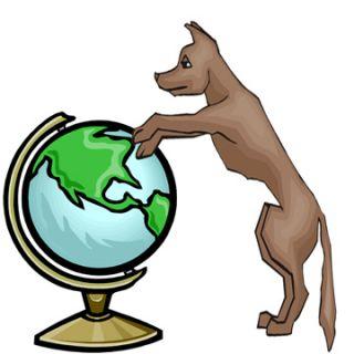 dog canine puppy population world number estimate count