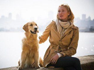 dog canine Maggie Rizer golden retriever