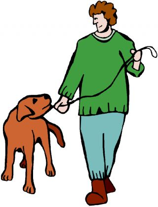 dog canine pet walk watch stress observe interpret
