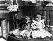 dog rover movie hepworth blair canine media