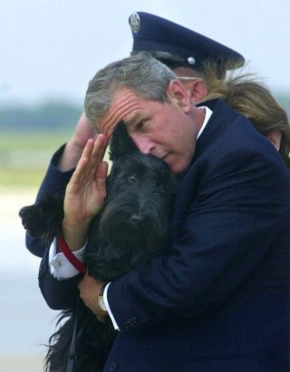 barney bush white house dog president salute