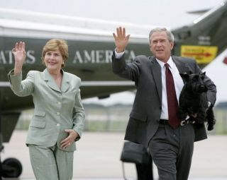 barney bush white house dog president laura