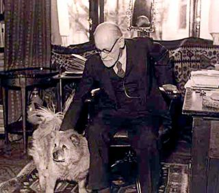 Sigmund Freud therapy dog Jofi stress psychotherapy