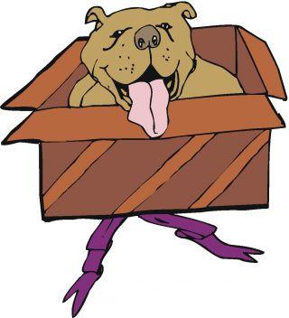 dog pet bond human job computer gift puppy cat rover.com porad engineer