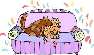 dog pet puppy human animal bond cat kitten demographic statistics number