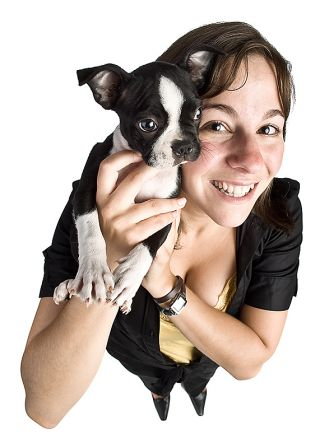 dog dogs pet puppy personality owner lifestyle nature-nurture