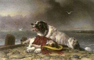 dog pet canine child rescue drowning landseer saved hero help altruism