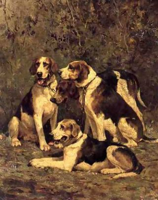 dog pet hound foxhound human animal bond hunt rest
