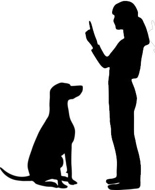 dog canine pet training learning reward punishment discipline positive