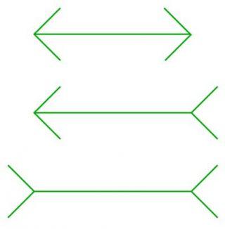 Moller Franz Illusion