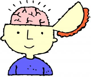Cartoon image of head with brain exposed