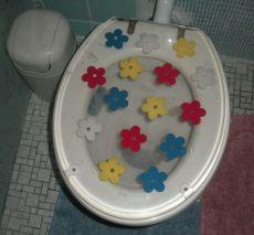 cheery Slovenian latrine