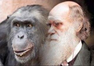 Darwin & friend