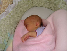 Baby girl in basket with snuggled in a pink blanket