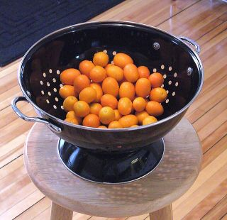 Kumquats in a colandar