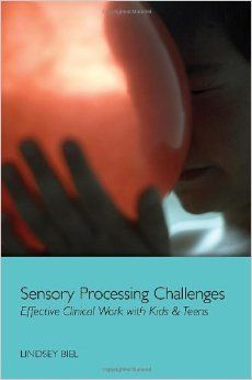 Cover of Lindsey's Book Sensory Processing Challenges