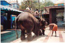 Girija Prasad undergoing training at temple