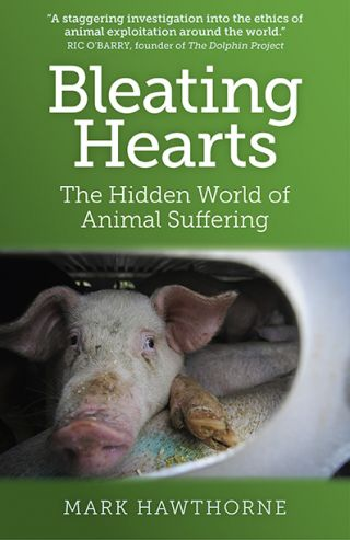 Image of book cover, Bleating Hearts