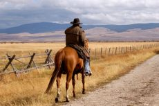 Cowboy alone on a deserted road