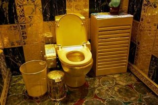 The world's most expensive toilet