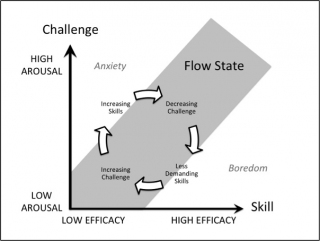 Figure 1. Balancing Challenge and Skill to Maintain the Flow