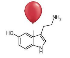 Boosting Your Serotonin Activity | Psychology Today