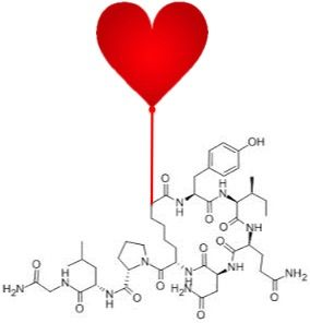 The Problems with the Love Hormone