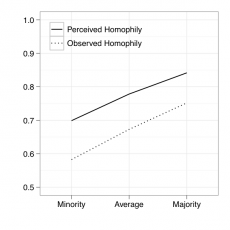Real and perceived agreement for majority and minority opinion holders