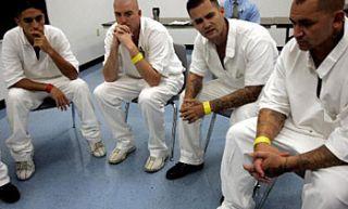 Rehabilitation for sex offender