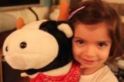 sophia with cow