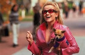 how legally blonde got me into notre dame psychology today source
