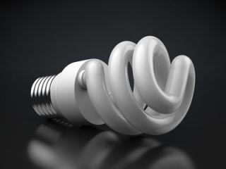 CFL toxicity