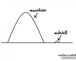 Image result for mountains out of molehills