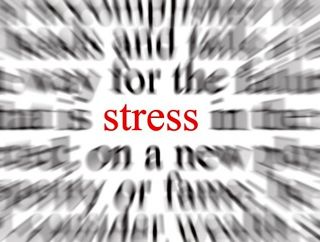 Chronic Stress Can Damage Brain Structure and Connectivity ...