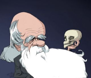 Caricature of Darwin examining skull