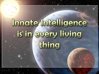 Innate Intelligence is in every living thing.