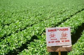 Danger of pesticide