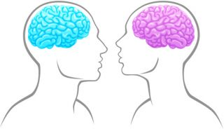 womens brains Women are less prone to memory problems in old age but men are less likely to  be affected by disabilities, a study suggests the amount of.