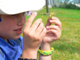 """Picking Grass at the Bus Stop""/Charlene Croft/CC BY-NC-ND 2.0"